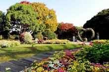 長居植物園 ハートの花壇