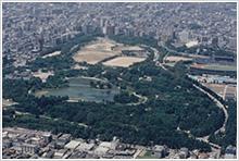 平成5年 長居公園