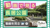 動画で見る長居公園