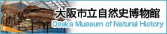 大阪市自然史博物館