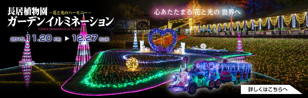 長居植物園 ガーデンイルミネーション~花と光のファンタジー~