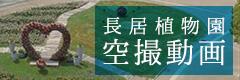 Nagai botanical garden aerial photography video