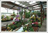 花と緑のエリア