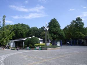 園芸売店2